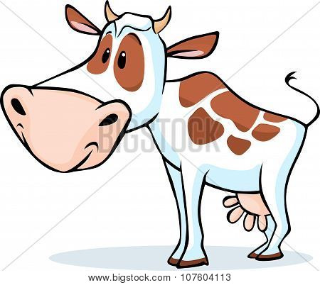 Cow Character Standing Isolated On White Background - Vector Illustration