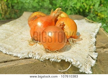 Ripe onion on textile background.