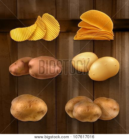 Potatoes vector set on wooden background