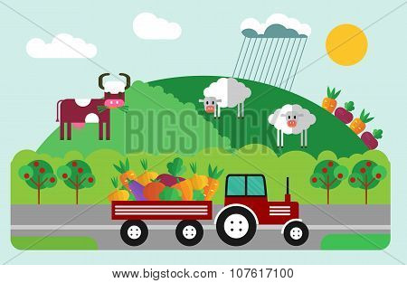 Red Tractor On The Field. Flat Vector Illustration.