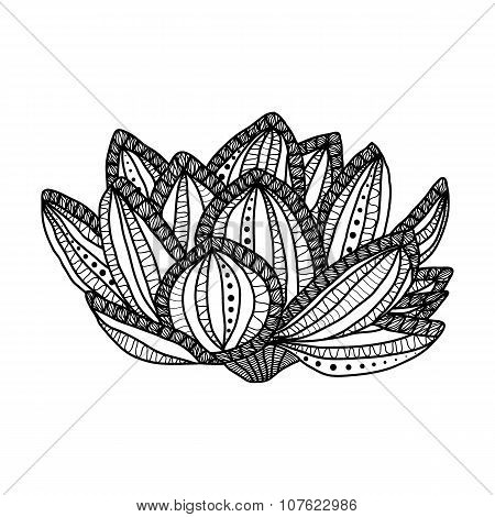 Lotus. Hand drawn magic flower - anti stress Coloring Page for adult with high details isolated on w