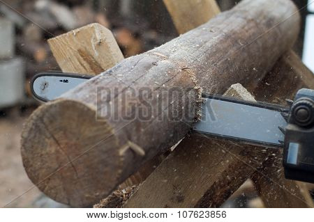 Working Saw And Pine Log