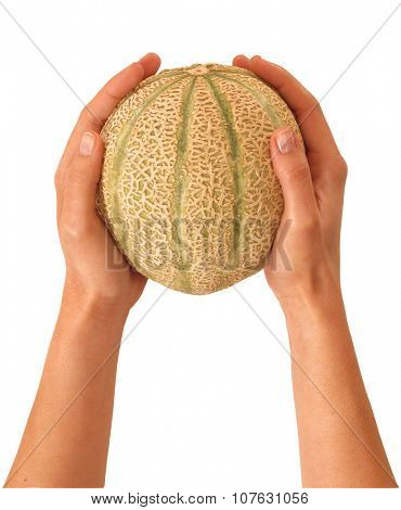 Female hands holding one melon isolated on White background.