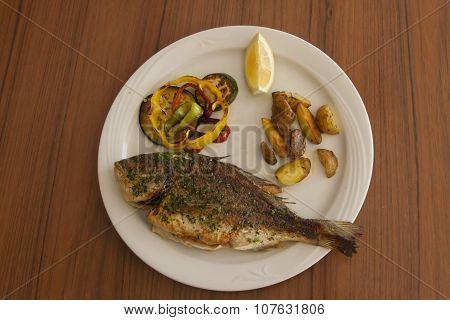 Dorada on the plate