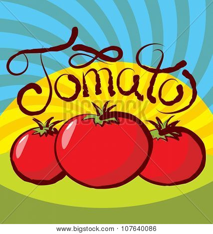 vector tomato with calligraphic inscription