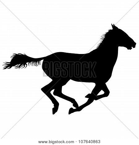Silhouette Of Black Mustang Horse Vector Illustration