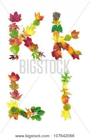 Font made of autumn leaves isolated on white. Letters k and l.