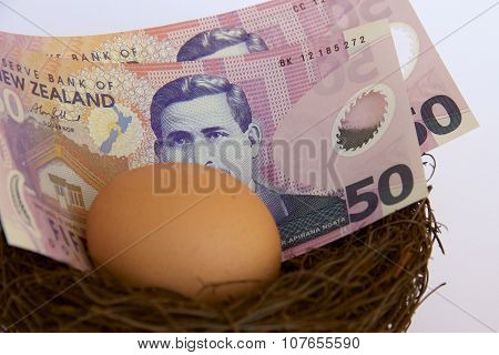 NZ Dollars in a Nest