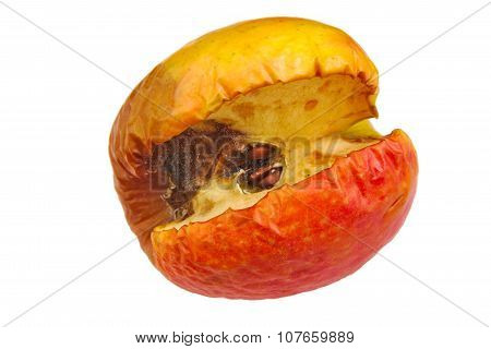Wilted rotten apple isolated on a white background