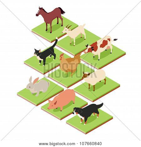Domestic Isometric Animals