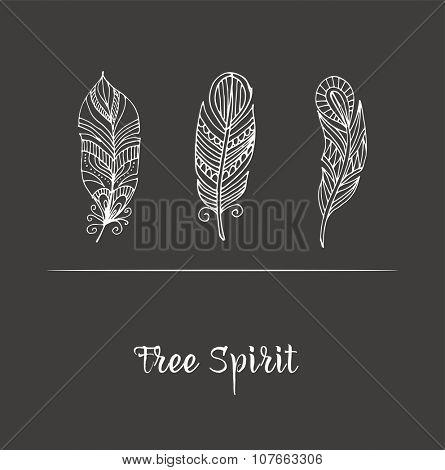 Hand drawn bohemian, tribal, ethnic feathers on chalkboard