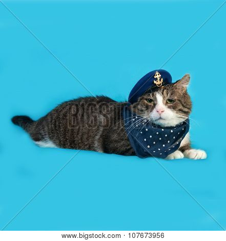 Old Striped And White Cat In Naval Uniform With Cap Lies On Blue