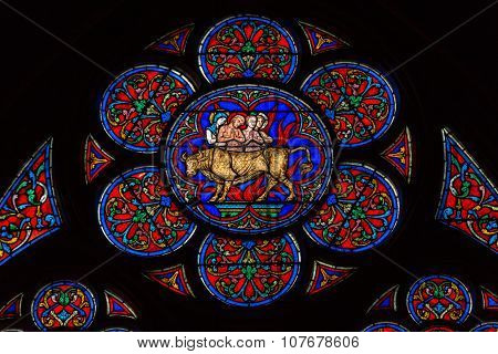 PARIS, FRANCE - SEPTEMBER 9, 2014: Stained glass windows inside the Notre Dame Cathedral UNESCO World Heritage Site. Paris France