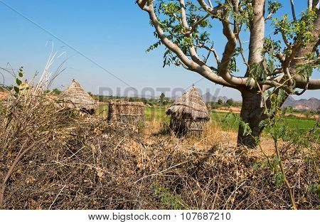 Straw hut in a poor village in the midst of nature, India.