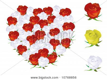 Vector illustration of a heart shape made from roses.
