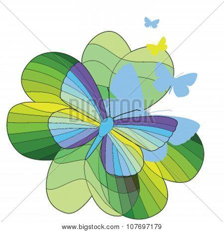 Soars rainbow butterfly on a leaf clover