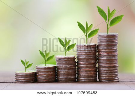 Silver Coin Stack And Treetop In Business Growth Concept On Wood Floor With Colorful Nature Backgrou