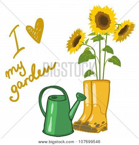 Sunflowers And Garden Rubber Boots And Watering Can Over White, Vector Illustration