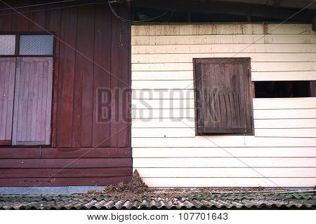 Bird Shit In abandon House