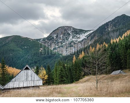Old wooden shepherd's hut in the pasture at the foot of the High Tatra mountains, Poland