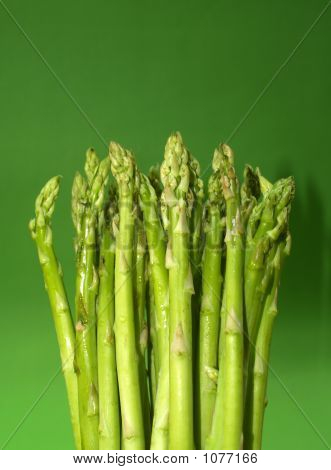 Close Up  Asparagus