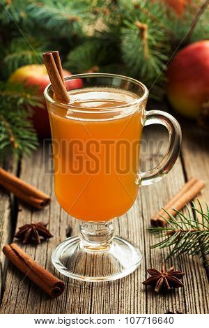 Homemade traditional winter hot apple cider with cinnamon stick, anise and spices. Thanksgiving or c