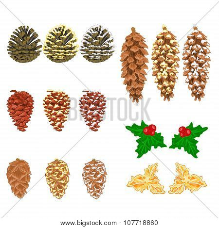 Christmas Decorations Pine Cones Natural  And Golden Pine Cones And Snow Pine Cones Vector