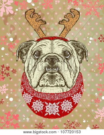 New year card with hand drawn graphic illustration of a bulldog, dressed in deer horns hat and red knitted sweater.