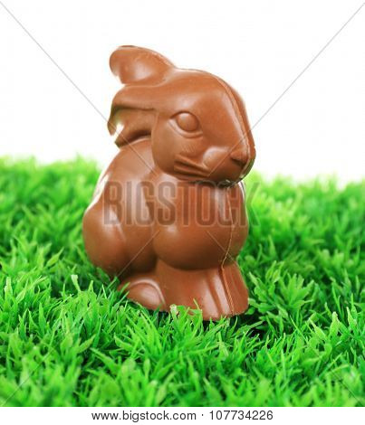 Chocolate Easter bunny on green grass, on white background