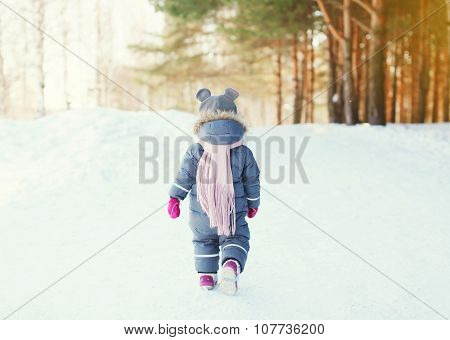Silhouette Little Child Walking In Forest On A Winter Day