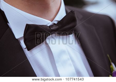 Butterfly Tie On The Neck Of The Bride