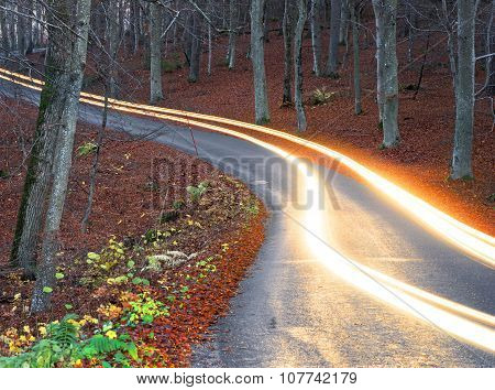 Light Trails From Car Headlight  On Rural Road