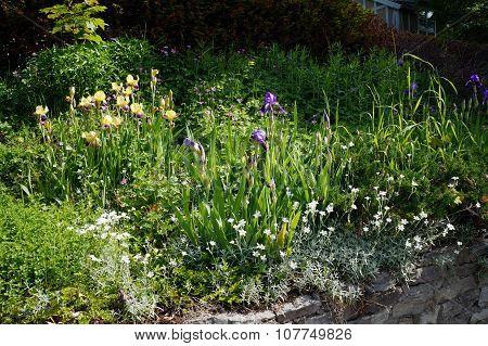 Harbor Springs Flower Garden