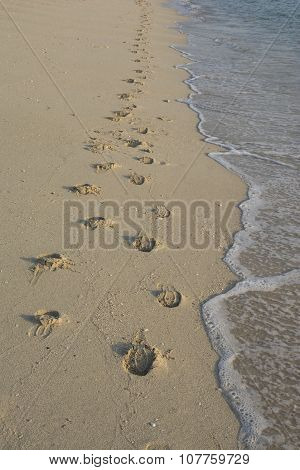 Multiple Footprints On The Beach Sand