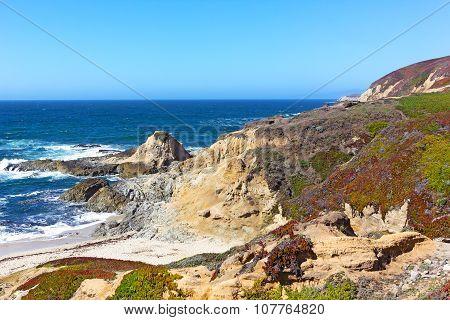 The Bodega Head promontory of Bodega Bay.