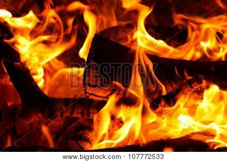 Bonfire Background Horizontal Image