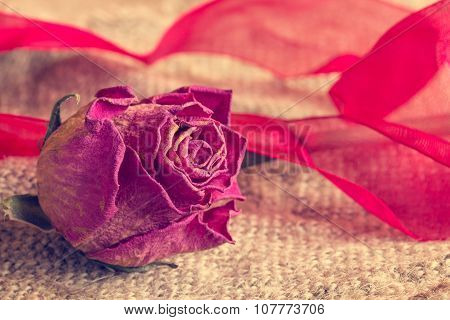 Old Rose With A Bow On Sackcloth