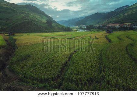 Beautiful Rice Terraces South East Asia,Mu cang chai,Yenbai,Vietnam