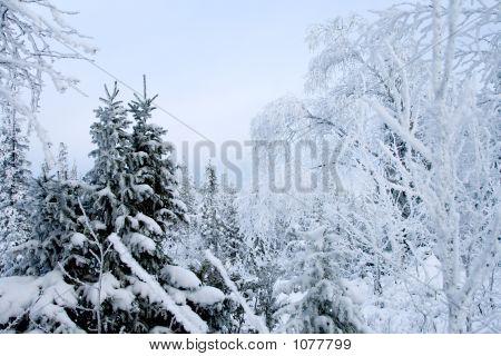 Winter Landscape, Pastel