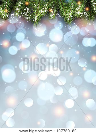 Winter flickering background with fir branches. Vector illustration.
