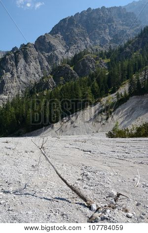 Withered Tree On Talus In Wimbachtal Valley In Alps In Germany