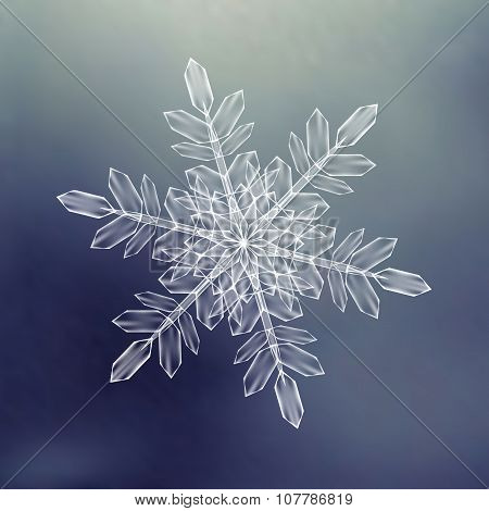 Decorative Snowflakes. Background pattern for winter and christmas theme