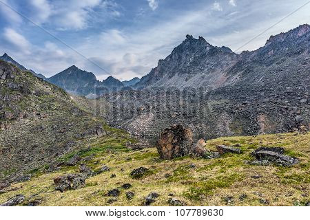 Alpine Tundra Under The Ridge