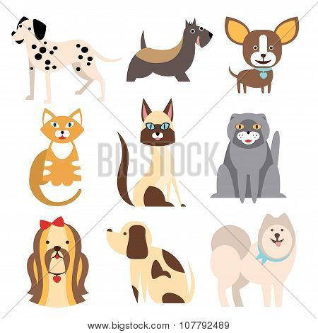 Collection of Cats and Dogs Different Breeds. Vector Illustration