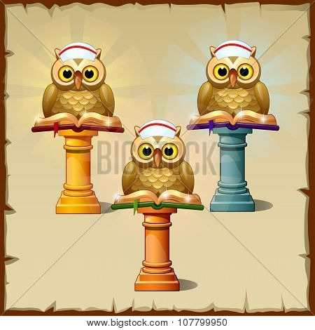 Three owls with books sitting on the podium
