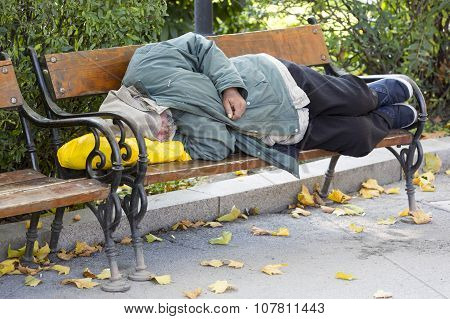 Homeless Man On A Bench