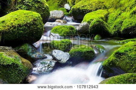 Cascading Waterfall Fresh Nature Green Environment Concept