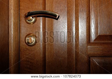 Wooden brown door with gold latch