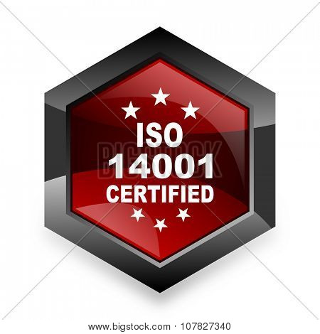 iso 14001 red hexagon 3d modern design icon on white background