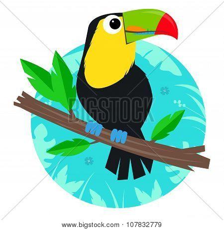 Toucan Clip-Art